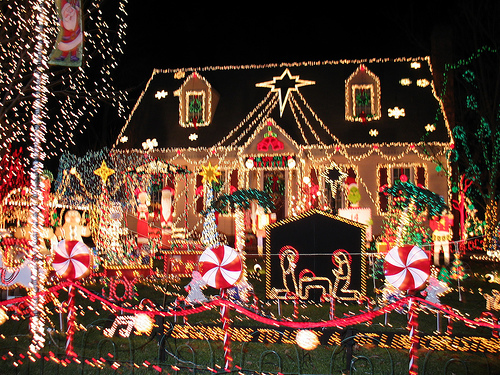 holiday lights san diego christmas lights tours top dog limo bus holiday lights tours in san - Christmas Light Tour